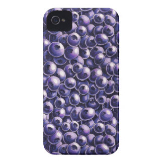Blueberry power Fresh berry  illustrations iPhone 4 Case