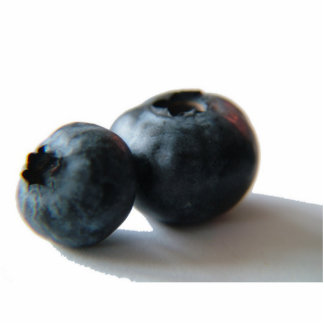 Blueberry sculpture photo sculpture
