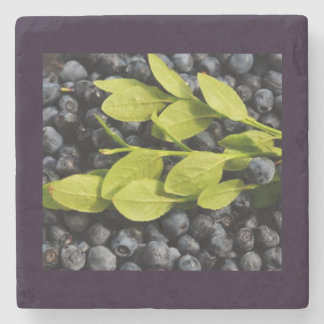 Blueberrys with Leaves Square Marble Stone Coaster