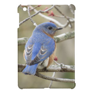 Bluebird Backside iPad Mini Case