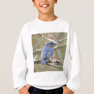 Bluebird Backside Sweatshirt