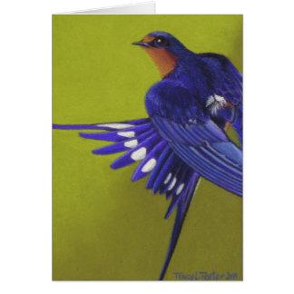 Bluebird, Barn Swallow Card