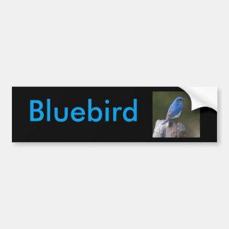 Bluebird Bumper Sticker