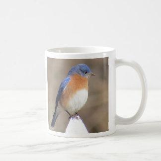 Bluebird Coffee Mug
