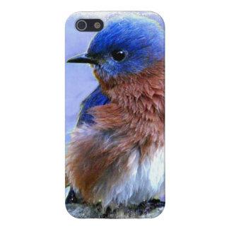 BLUEBIRD IPHONE 5 CASE