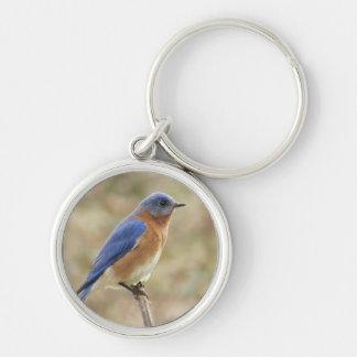Bluebird Key Chain