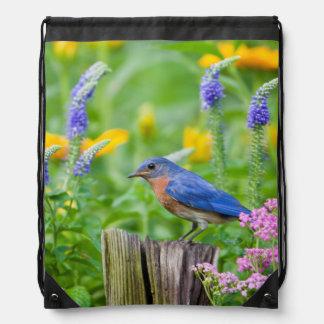 Bluebird male on fence post in flower garden rucksack