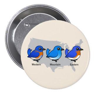 Bluebird Map Pinback Button