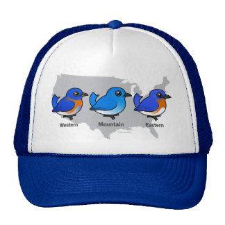 Bluebird Map Trucker Hat