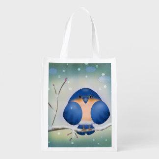 Bluebird of Winter