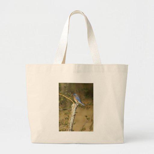 Bluebird Ornithology Bag