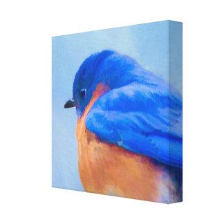 Bluebird Painting - Original Bird Art Canvas Print
