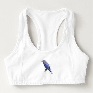 Bluebird Sports Bra
