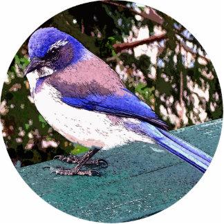 Bluebird Standing Photo Sculpture