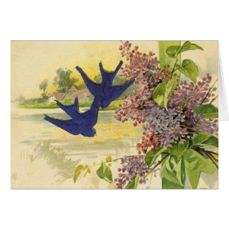 Bluebirds Vintage All Occasions Greeting Card