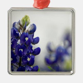 bluebonnet blue Silver-Colored square decoration