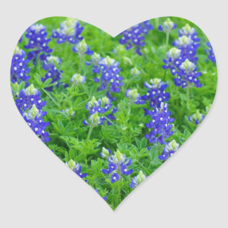 Bluebonnet Field Heart Sticker