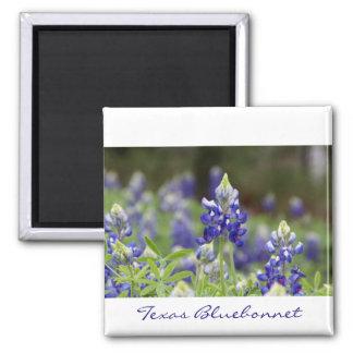 Bluebonnet Field Magnet