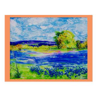 bluebonnet fields forever postcard