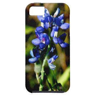 Bluebonnet Floral iPhone 5 Case