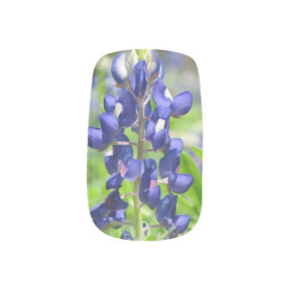 Bluebonnet Minx Nail Sticker