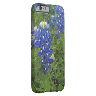 Bluebonnet Phone Case Barely There iPhone 6 Case