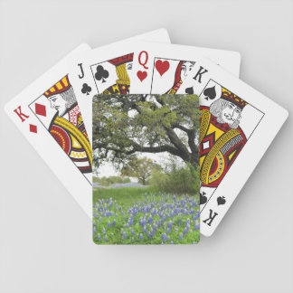 Bluebonnet Playing Cards