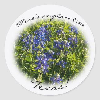 "Bluebonnet ""There's no place like Texas"" Sticker"