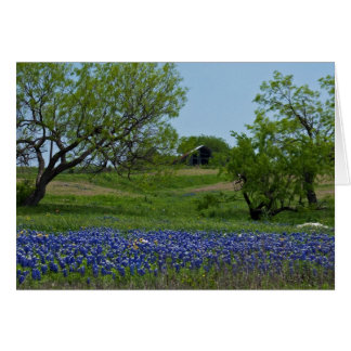 Bluebonnets and an Old Barn note card