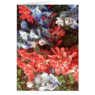 Bluebonnets and Paintbrushes Cards