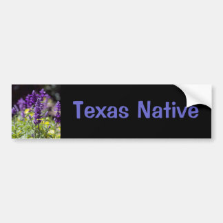 Bluebonnets Bumper Sticker