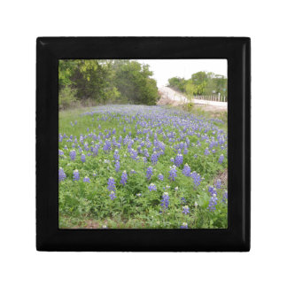 Bluebonnets Field.jpg Small Square Gift Box