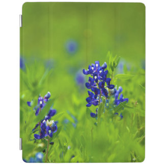 Bluebonnets Floral iPad Cover
