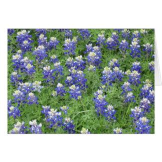 Bluebonnets in a field greeting card