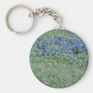 Bluebonnets In Texas Keychains
