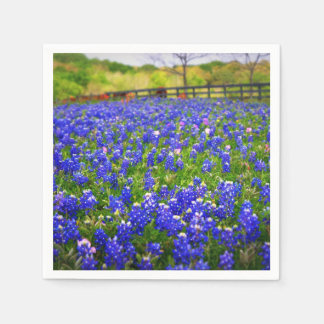 Bluebonnets in Texas Paper Serviettes