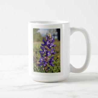 Bluebonnet's of Texas Mugs