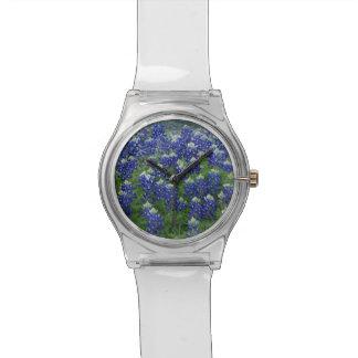 Bluebonnets Watch