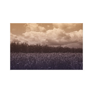 Bluecorn Blues Canvas Print