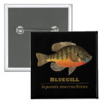 Bluegill Bream Fishing Buttons