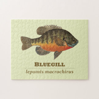Bluegill Bream Fishing Jigsaw Puzzle