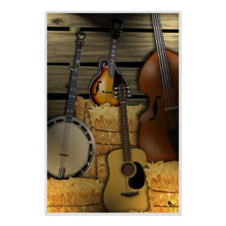 Bluegrass Instruments Poster
