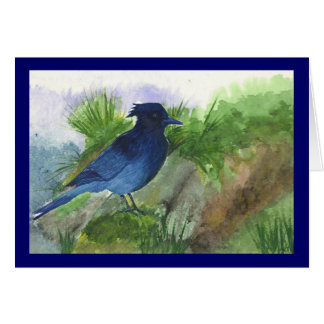 Bluejay In the Muskeg Card