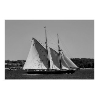 Bluenose II Black and White Poster