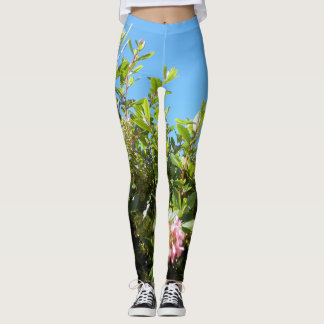 Bluesky Green Yoga Pants