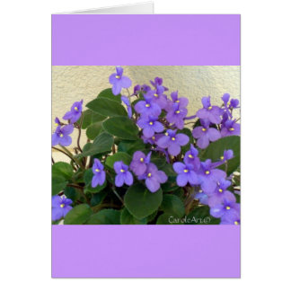 Bluest Blue Violets Greeting Card