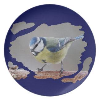 BLUETIT BLUE TIT photo: Jean Louis Glineur Dinner Plate