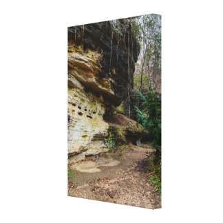 Bluff Lined Walkway Canvas Print