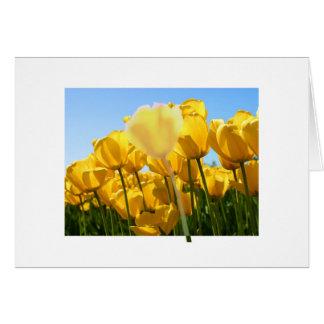 Blur Tulip Note Card