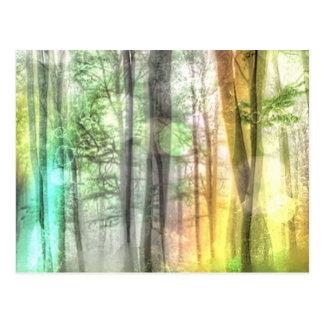 Blurred Forest Postcard